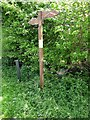 M0180 : Signpost on the Pilgrim's Way by Oliver Dixon