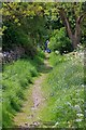 SK1471 : Back Lane Footpath by Mick Garratt