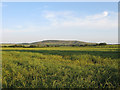 TQ5306 : Nine Acre Brook by Simon Carey