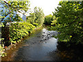 SJ9598 : River Tame, Stalybridge by David Dixon
