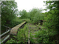 SJ9152 : Disused railway track at Stockton Brook, Staffordshire by Roger  Kidd