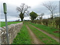 NZ1717 : Bridleway near Gainford by Miss Steel
