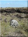 SD9129 : Boundary Stone by Humphrey Bolton