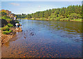 NJ8600 : Skipping stones on the River Dee by C Michael Hogan