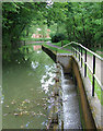 SK0247 : Canal and overflow weir near Froghall, Staffordshire by Roger  Kidd
