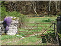 NN8122 : Gate near Quoig by Miss Steel