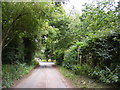 TM2456 : Hall Road & the footpath to Martins Lane by Adrian Cable