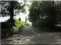 SJ5071 : Well Lane near Mouldsworth by Jeff Buck