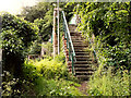 SJ9799 : Steps and Bridge, Heyrod by David Dixon
