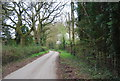 TQ1332 : West Sussex Literary Trail in Nowhurst Copse by N Chadwick