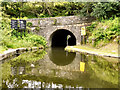 SD9701 : Scout Tunnel, Huddersfield Narrow Canal by David Dixon
