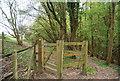 TQ7933 : HWLT exiting Dibley Shaw by N Chadwick