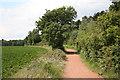SK6071 : Dukeries Trail by Richard Croft