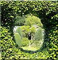 SX4968 : The Garden House garden in June - 39 : Week 24