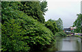 SJ8746 : Trent and Mersey Canal by Hanley Cemetery, Stoke-on-Trent by Roger  Kidd