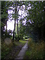 TG0524 : St.Andrews Church Path by Adrian Cable