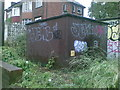 TQ4294 : Graffiti off Rodding Lane by Alex McGregor