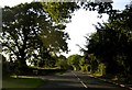 SJ8483 : Styal Road by junction of Quarry Bank Road by Peter Bond