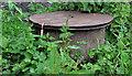 J3067 : Manhole cover, Dixon Park, Belfast by Albert Bridge
