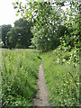 SE2029 : Footpath across Tong Moor - viewed from Moorlands Road by Betty Longbottom