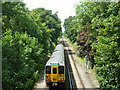 TQ3064 : The 11:53 from Victoria between Waddon and Wallington by Robin Webster