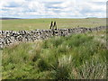 SE0962 : Ladder Stile near Washburn Head by Chris Heaton