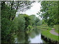 SJ9048 : Caldon canal east of Birches Head, Stoke-on-Trent by Roger  Kidd