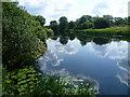 TL0799 : The River Nene near Wansford by Marathon