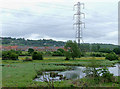 SJ9051 : River Trent floodplain north of Milton, Stoke-on-Trent by Roger  Kidd