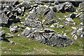 SX5376 : Peter Tavy: rocks and boulders on Cox Tor by Martin Bodman