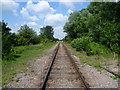 TL1197 : The Nene Valley Railway near Castor by Marathon