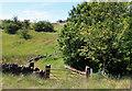 SD9706 : Wallhill Clough by Michael Fox