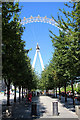 TQ3079 : London Eye, London SE1 by Christine Matthews