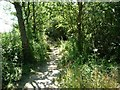 SE2110 : Footpath running parallel to Shelley Woodhouse Lane by Christine Johnstone