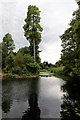 TQ1876 : Lake, Kew Gardens, London by Christine Matthews