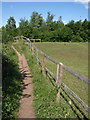 SP2755 : Path and fence near Wellesbourne by Derek Harper