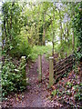 TM4366 : Entrance Path to the Village Green by Adrian Cable