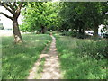 TQ4085 : Path near Capel Road by Roger Jones