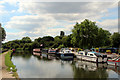 TL3706 : River Lee Navigation, Hoddesdon, Hertfordshire by Christine Matthews