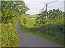 H7134 : Dipping Irish country road by C Michael Hogan
