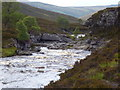 NN8988 : Gorge on River Feshie by Peter Wilson