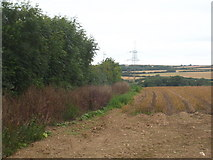 SX0271 : Field boundary at Kestle by Rod Allday