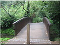 TQ4768 : Footbridge over River Cray by David Anstiss