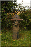 TL0962 : Pillar fountain, near Little Staughton by Julian Osley