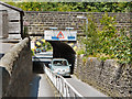 SE0125 : Thrush Hill Road Railway Bridge by David Dixon