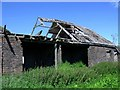 NS8668 : Old Wester Whin (Ruin) [4] by Robert Murray