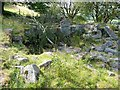 SE0025 : Ruins of Daisy Bank, Mytholmroyd by Humphrey Bolton