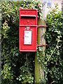 TM2351 : Council Houses George VI Postbox by Adrian Cable