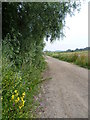 Dist:0.5km<br/>The footpath from Bourne Wood and the edge of Swanley heads towards Hockenden. The A20 is just off to the right and Joydens Wood is on the horizon.