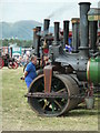 SO8040 : Welland Steam Rally - engines in the parade ring by Chris Allen